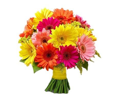 Torna a grande richiesta! Una composizione floreale a scelta a solo 14,90 euro anzichè 30...inclusa la consegna a domicilio!! Adesso tocca a te... a dirlo con i fiori!