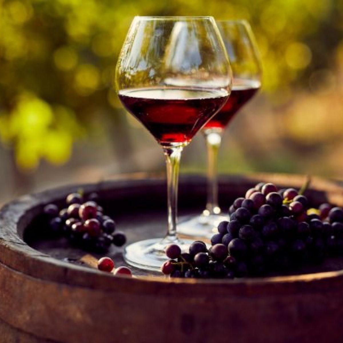 Nuova validità! A Sestri Levante! Degustazione di vino con tagliere di formaggio e salumi e visita alla cantina per 2  persone alla Cantina degli Abissi
